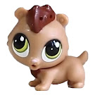 Littlest Pet Shop Style Set Hamilton Rumble (#3706) Pet