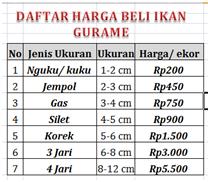 Daftar Harga Beli Ikan Gurame Terbaru