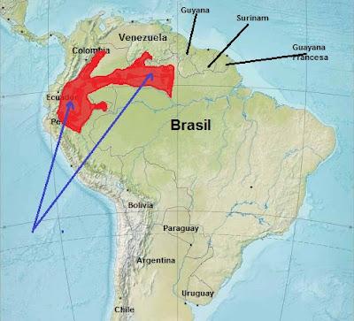 endangered mammals in southamerica
