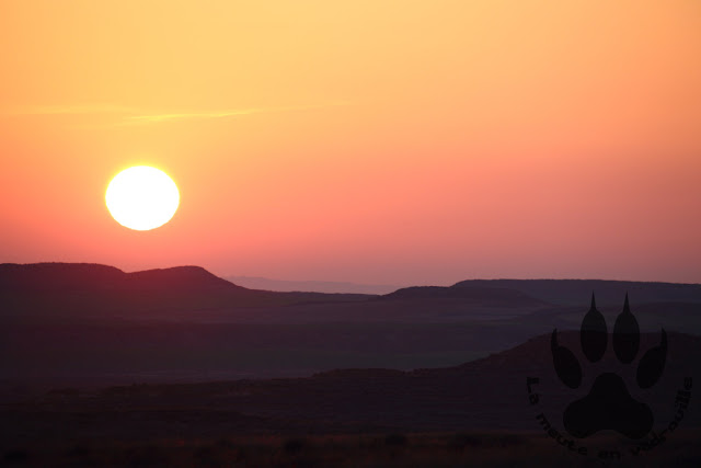 Espagne-aragon-steppes-planeron-lever-soleil