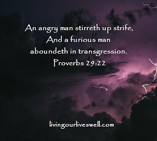 Proverbs 29:22