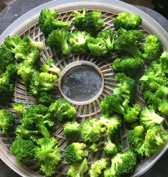 Dehydrating broccoli, how to use dehydrated vegetables, dried broccoli, preserving broccoli