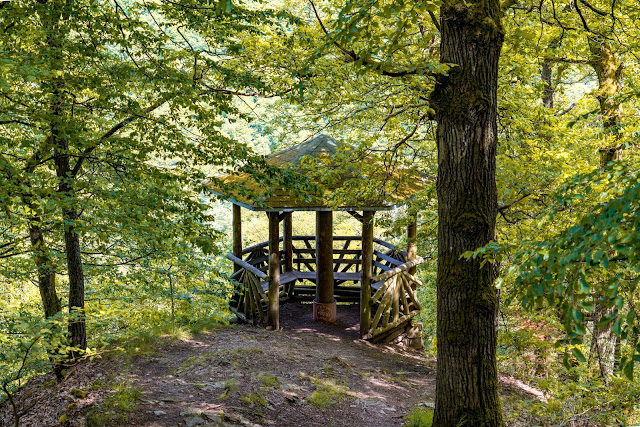 Traumschleife Baybachklamm | Saar-Hunsrück-Steig | Wandern Kastellaun | Premiumwanderweg Hunsrück 11