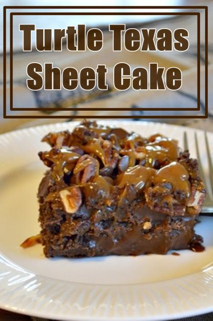 Turtle Texas Sheet Cake
