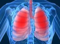 volume udara pernapasan dan kapasitas paru-paru