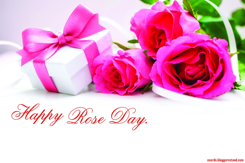 Happy rose day images 2021 facebook cover pics