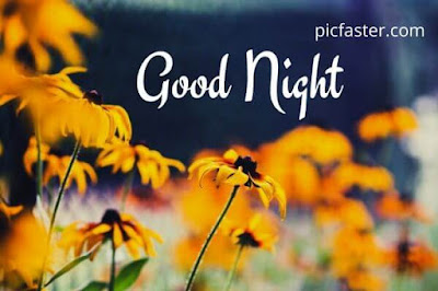 Top Beautiful - Good Night Images With Flowers Download