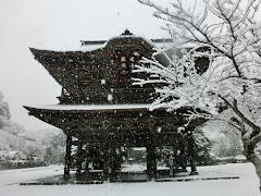 雪の建長寺
