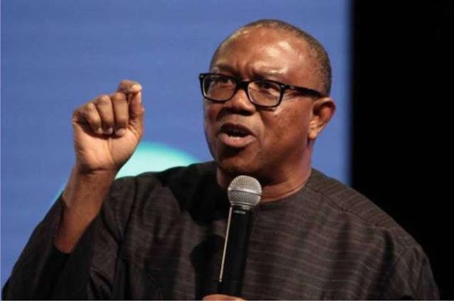 110m  out of 190m population of Nigeria will become poor by end of 2020 – Peter Obi
