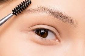 Coba Deh, Inilah Cara Agar Bulu Mata Tampak Lentik dan Panjang