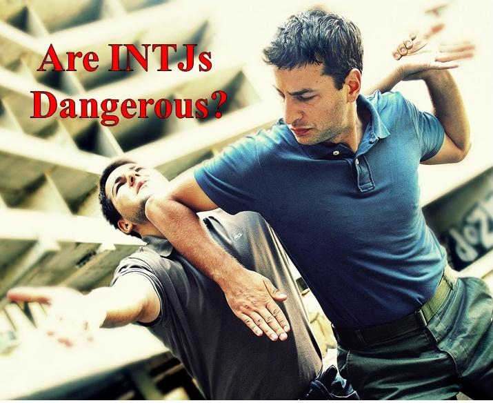 The Blog of Bryan C  Laesch: Are INTJs Dangerous?