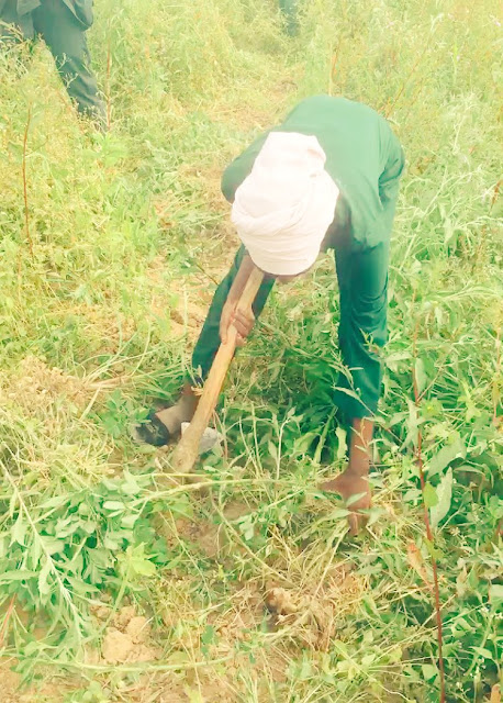 """Photos: """"When I am not slaying, I go to the farm"""" Beautiful Nigerian lady reveals her source of income"""