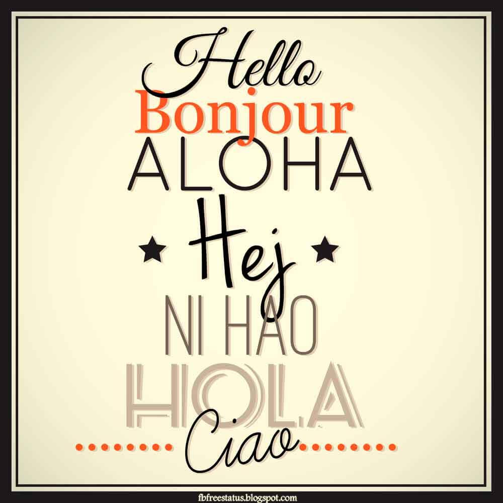 Hola Bonjour Hello Hey Nihao Aloha Ciao.