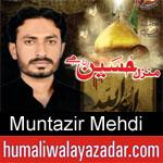 https://humaliwalaazadar.blogspot.com/2019/08/muntazir-mehdi-nohay-2020.html