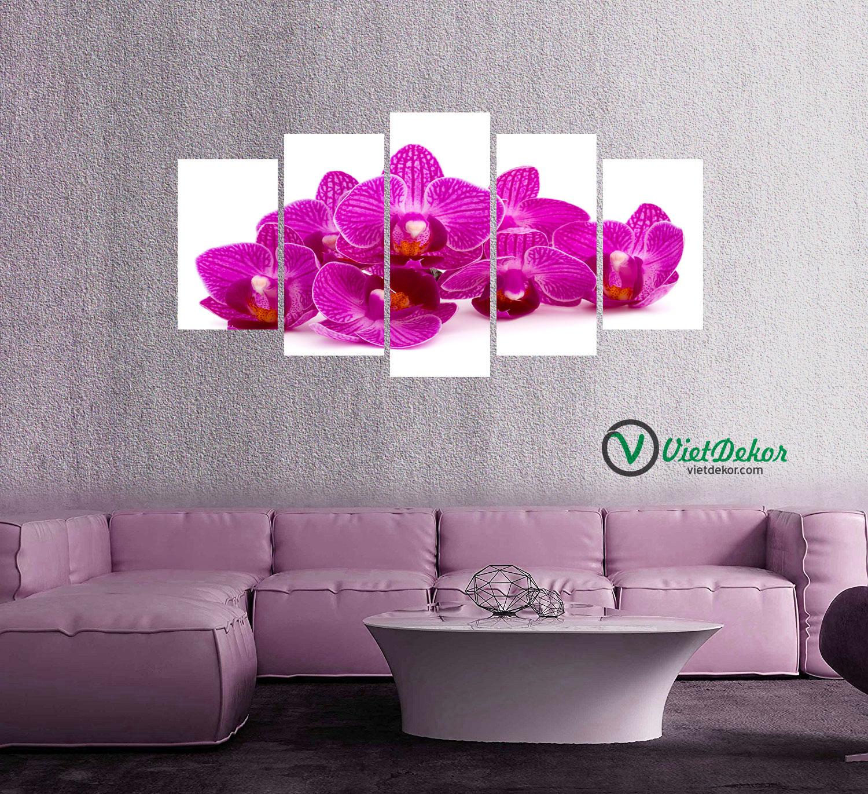 Tranh treo tường bộ 5 hoa phong lan