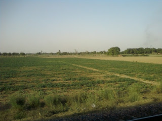 land-work-easy-in-bihar