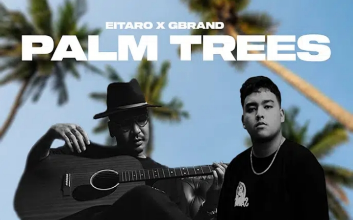 Eitaro - Palm Trees ft Gbrand