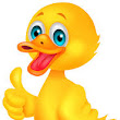 Hi, Duck!! What is your most prized possession?