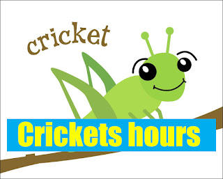 Crickets hours