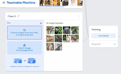Gathering images in google teachable machine 2.0