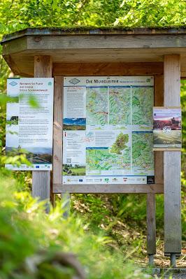 Premiumwanderweg Murgleiter | Etappe 2 von Gernsbach nach Forbach | Wandern nördlicher Schwarzwald 03