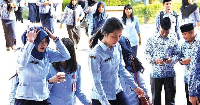 Gaji dan tunjangan pegawai pemerintah dengan perjanjian kerja. Gaji Cpns Guru 2019 - Informasi CPNS/ASN IndonesiaInfo ...