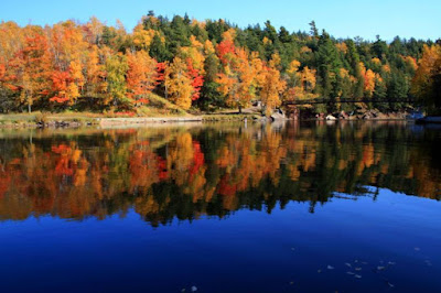 The Best Places to View Fall Colors in Michigan