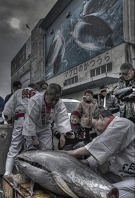 Tuna Tuna Tuna! (Maguro Festival), Nachi-Katsuura Town, Wakayama Pref.