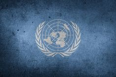 The United Nations Geneva Fund