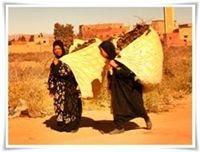 Dades-Marruecos