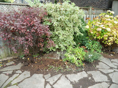 Leslieville Toronto Backyard Garden Fall Clean up after by Paul Jung Gardening Services
