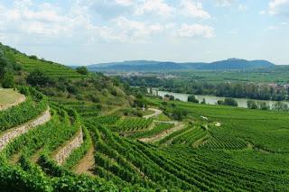 autriche wachau heritage trail randonnée krems dürnstein