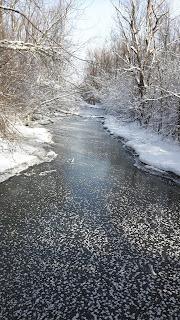 parc de Bois-de-Liesse, rivière, neige, glace, arbres