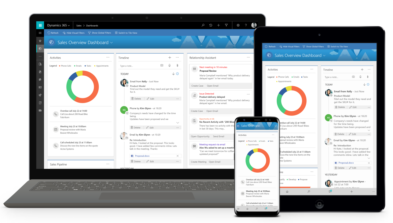 How does Dynamics 365 for Sales, Business Edition work?
