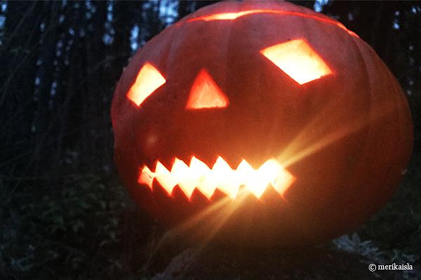 Halloween jättikurpitsa