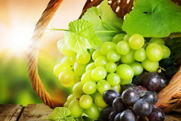 Health benefits of muscadine grapes - Waras Info