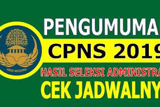Yuk, Pengunguman Hasil Seleksi Administrasi CPNS 2019 Cek SSCASN