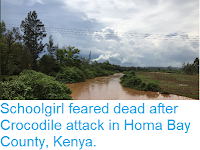 http://sciencythoughts.blogspot.com/2019/02/schoolgirl-feareddead-after-crocodile.html