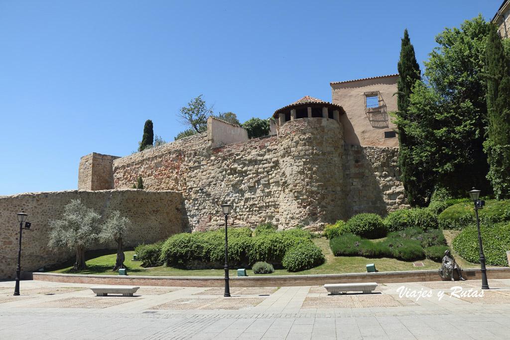 Lienzo de la muralla de Salamanca