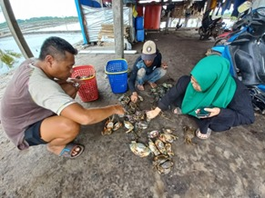 Chandra Buana Ajak Warga Desa Banggina Panen Untung  Lewat Kepiting Bakau