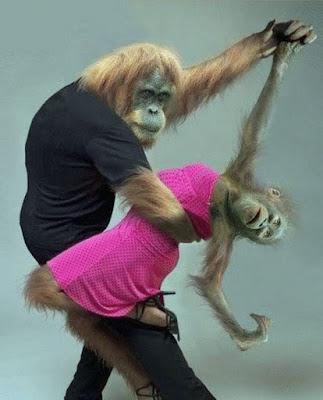 Lustiges Bild - Mann und Frau als Affen beim tanzen