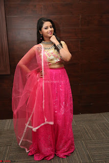 Geethanjali sizzles in Pink at Mixture Potlam Movie Audio Launch 026.JPG