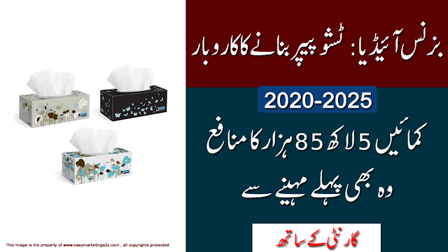 new business ideas in Pakistan 2020 بزنس آئیڈیا پاکستان کامیاب کاروبار