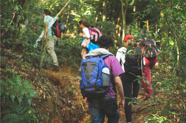Ecotourism: An Alternative Tourism: Jungle walk in group