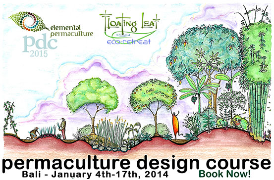 Out of phase against permaculture for Home study garden design courses