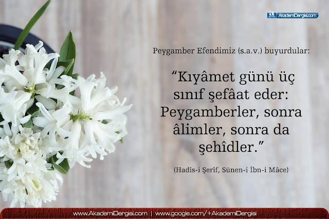 akademi dergisi, Mehmet Fahri Sertkaya, peygamber efendimiz, şefaat, hz. ömer, hz. aişe, kıyamet, salevat, cennet, cehennem, tevrat, ayet-i kerime, hadisi şerif, bidat