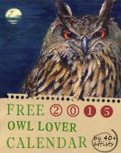 Owl Lover 2015 Calendar
