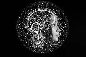 Jenis Lemak Yang Dapat Meningkatkan Kekuatan Otak (Brain Power)