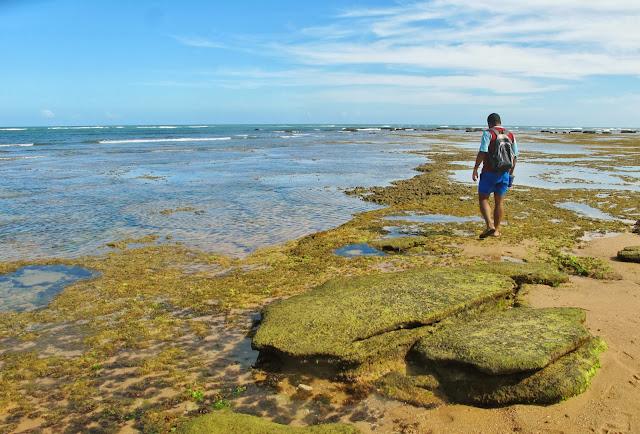 Piscinas naturais da Praia do Forte na Bahia