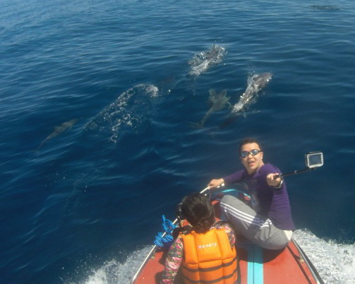 Travel.Tinuku.com Derawan islands and atolls in East Kalimantan diving and snorkeling paradise watch sea turtles and manta